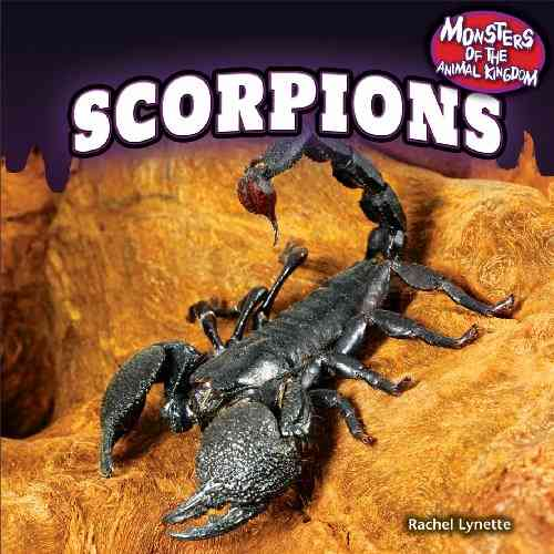 Scorpions By Lynette, Rachel